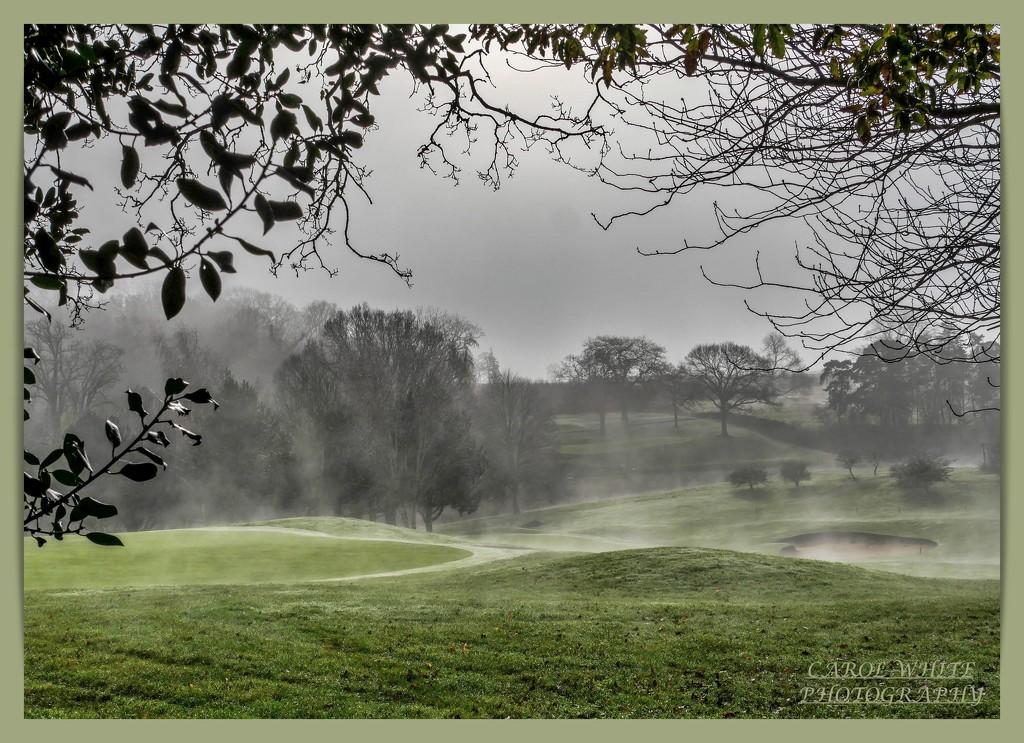Rising Mist On The Golf Course by carolmw