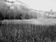 6th Feb 2021 - Across the Lake