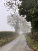 6th Feb 2021 - Foggy walk this morning