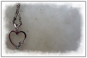 5th Feb 2021 - Macro Heart
