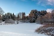 6th Feb 2021 - Winter wonderland