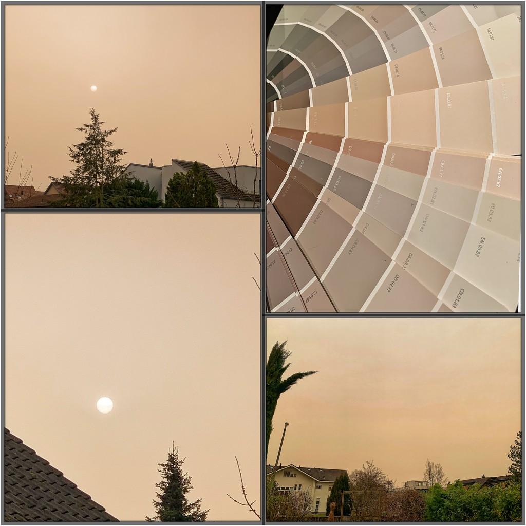 Color of Sahara wind.  by cocobella