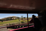 7th Feb 2021 - From a railway carriage on the Weka Pass railway