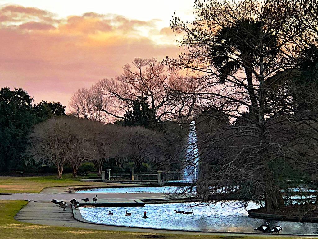 Hampton Park fountain at sunset by congaree