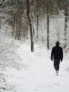 7th Feb 2021 - Snow