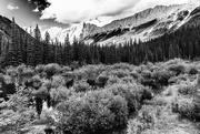 8th Feb 2021 - Jasper Mountains