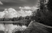 7th Feb 2021 - Lakeside Walk