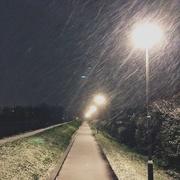 7th Feb 2021 - Snow blizzard