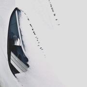 8th Feb 2021 - Tesla