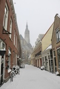 8th Feb 2021 - Delft