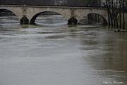 6th Feb 2021 - The Seine is high
