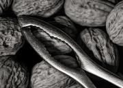 8th Feb 2021 - Walnuts and Nutcrackers...