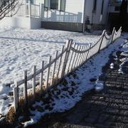 8th Feb 2021 - Fences #4: Little White Fence