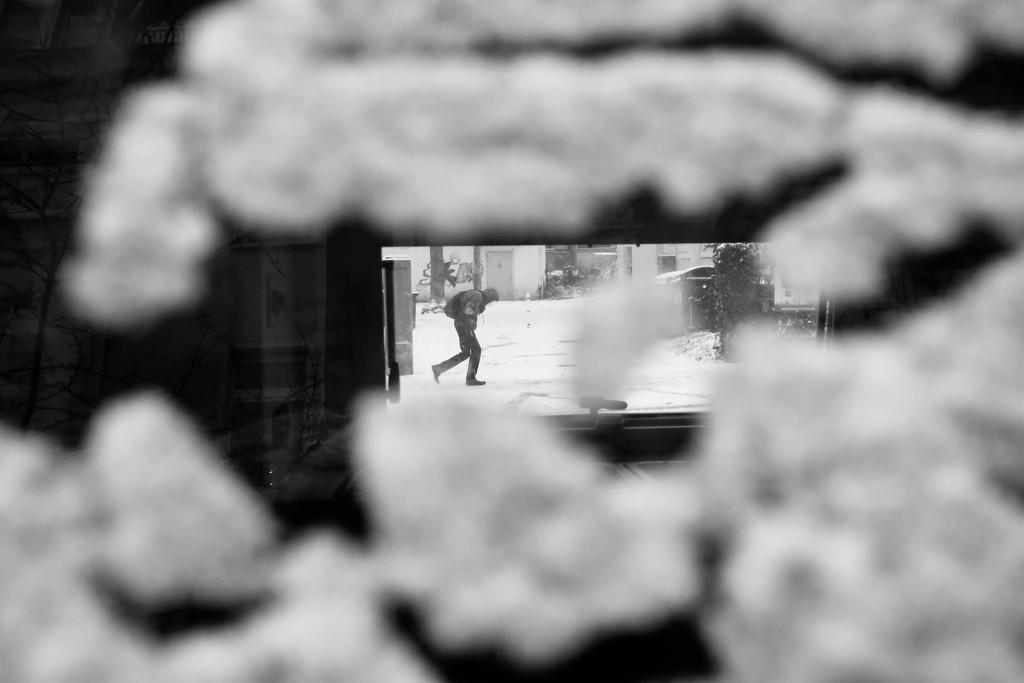 German blizzard  by vincent24