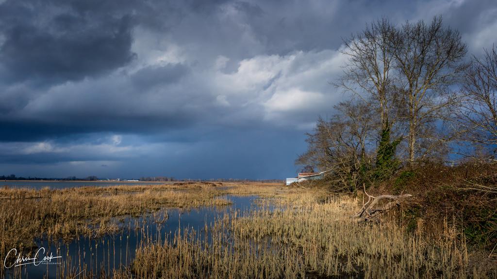Westham Marsh by cdcook48