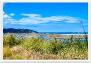 9th Feb 2021 - Waikato River Mouth- Tasman Sea.