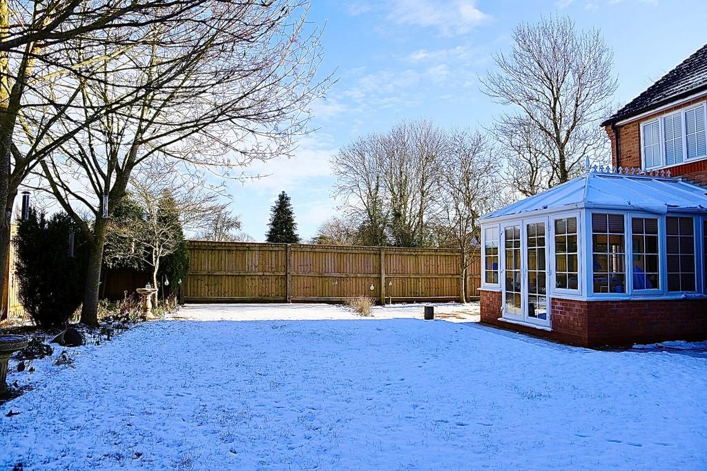 Snowy Back Garden by carole_sandford