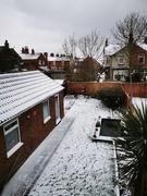 8th Feb 2021 - Snowy Start