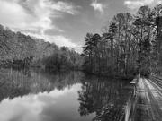 7th Feb 2021 - Springtime at the lake