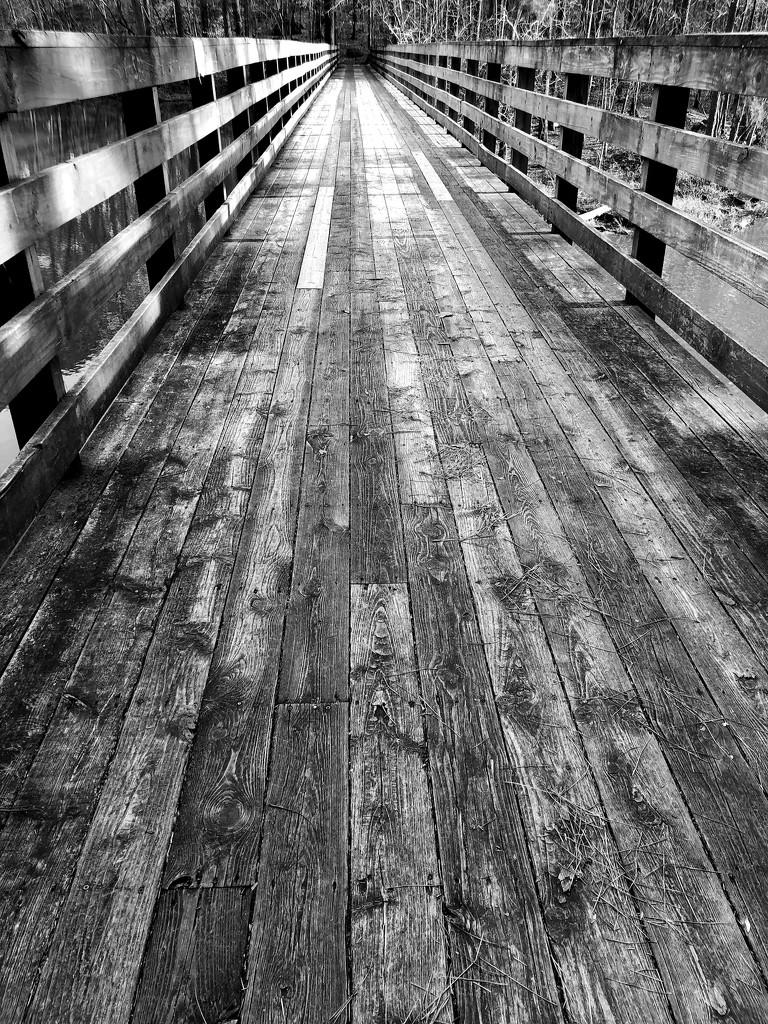 Bridge in BW by homeschoolmom