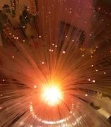 9th Feb 2021 - Our Fibre Optic lamp.