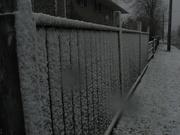 9th Feb 2021 - Fence #5: Snowy Day Fence