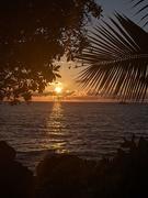 8th Feb 2021 - Kona sunset