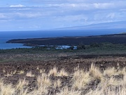 2nd Feb 2021 - Kohala coast
