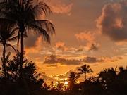 1st Feb 2021 - Sunset in Hawaii