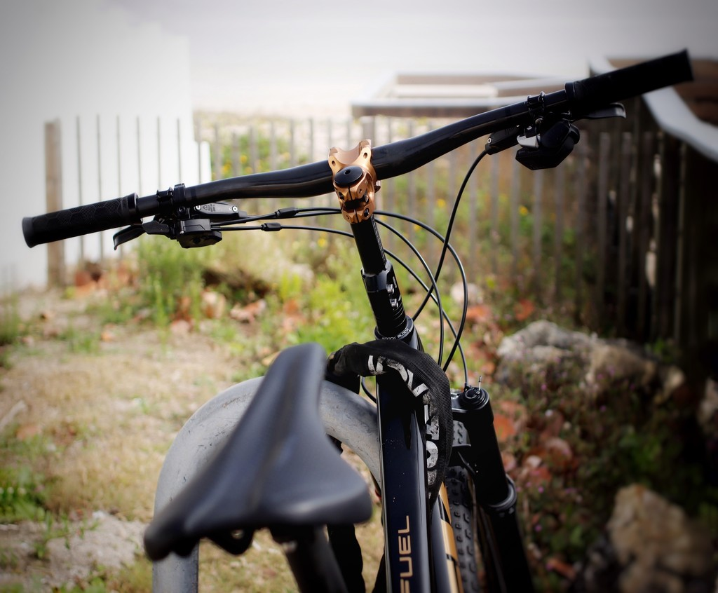 Ride On by joemuli