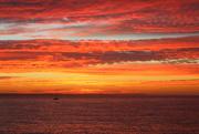 11th Feb 2021 - Sailing into the sunrise