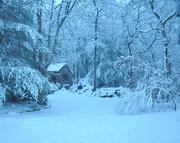 11th Feb 2021 - Walkin' in a winter wonderland..............
