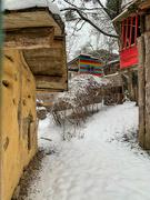 13th Feb 2021 - Snowy way.
