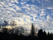 12th Feb 2021 - ...& sunrise..