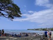 11th Feb 2021 - kahalu'u beach