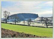 12th Feb 2021 - Winter Landscape