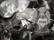 12th Feb 2021 - Hope