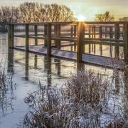 12th Feb 2021 - Sunrise through the bridge