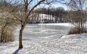 12th Feb 2021 - Snow by the lake