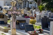 12th Feb 2021 - Collioure old cemetery