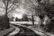 12th Feb 2021 - A bend in the road...