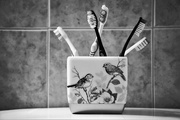 9th Feb 2021 - Toothbrush Collection