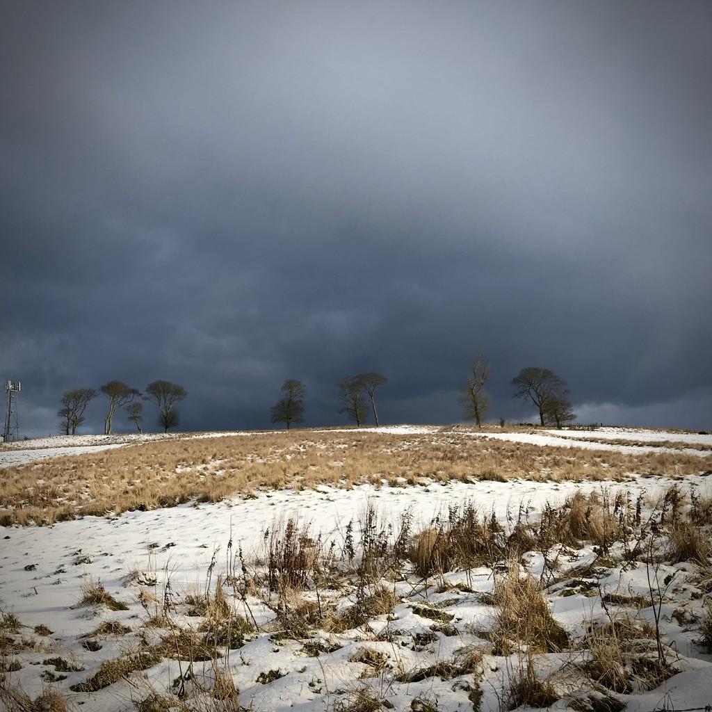 Moody sky full of more snow by joannapayne