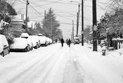 13th Feb 2021 - Snowy 22nd
