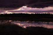 7th Feb 2021 - Flood Plain Reflection