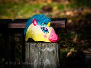 13th Feb 2021 - Random Wildlife Deserves Full Color