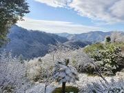 14th Feb 2021 - A Spot of Snow