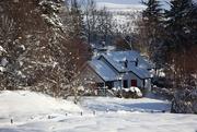 14th Feb 2021 - Sunnyside Cottage