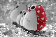 14th Feb 2021 - My Caring Valentine