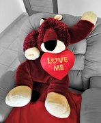 14th Feb 2021 - Wishing you a Happy Valentine !